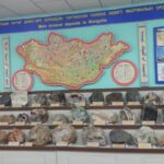 A very interesting geological museum!